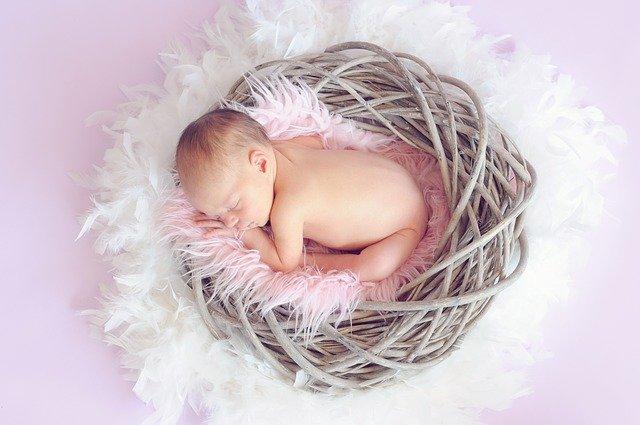 novorozeně v hnízdečku