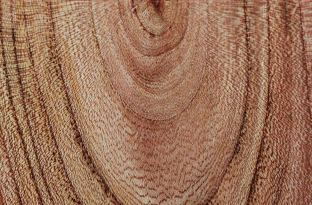 dřevěné letokruhy