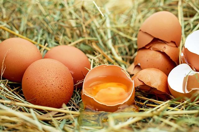 kuřecí vejce.jpg