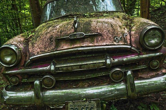 auto v lese