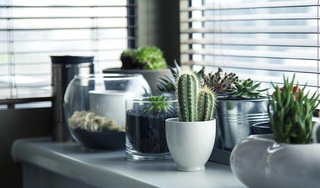 Výrobky ze skla na stole