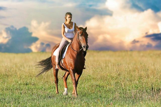 žena na koni projíždějící se po poli